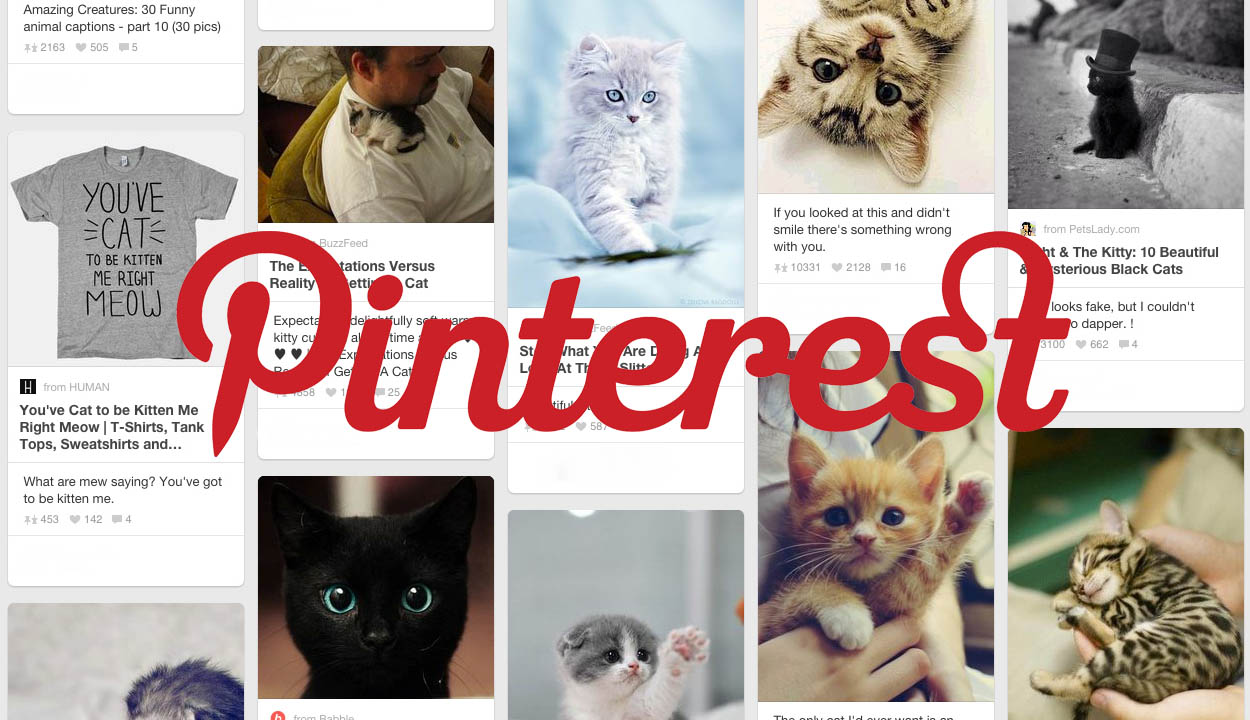 Pinterest Announces Promoted Pins | Logic Media